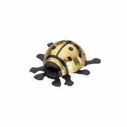 Schokolade Glückskäfer klein gold