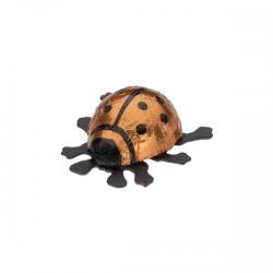 Schokolade Glückskäfer klein orange